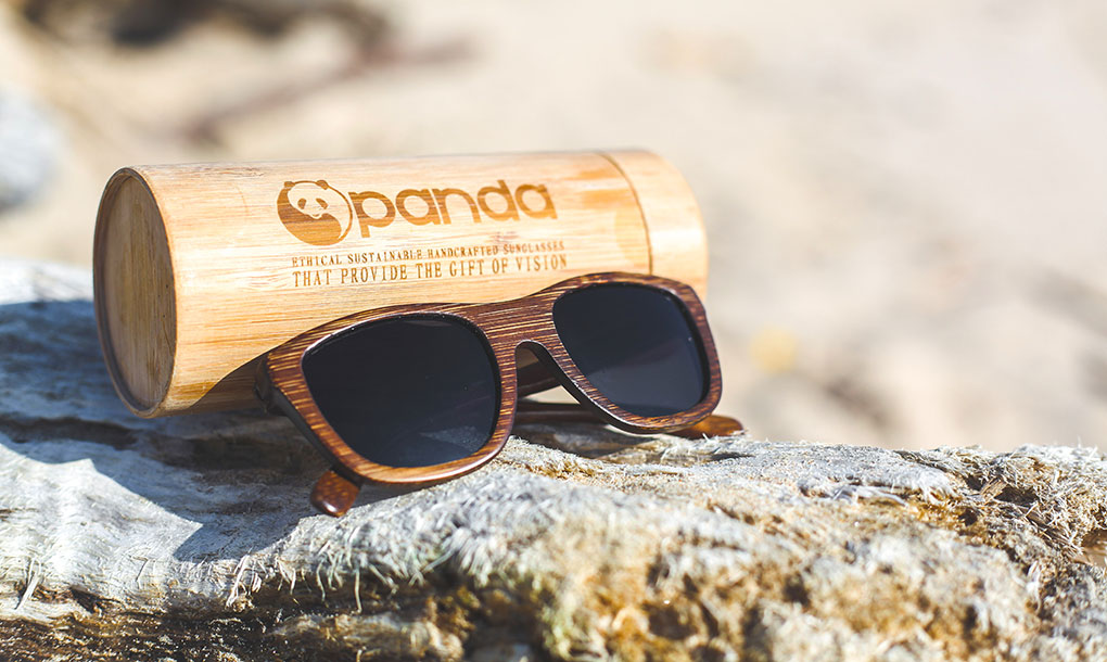 pair of Panda brand Victoria brown sunglasses on a rock
